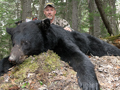 Bear Hunting in BC