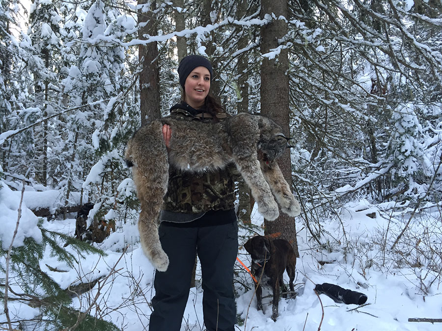 For the Love of Hounds II | Bart Lancaster | Guides Eye ... |Lynx Hunting With Hounds